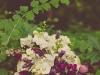 Plum & Chartreuse Garden